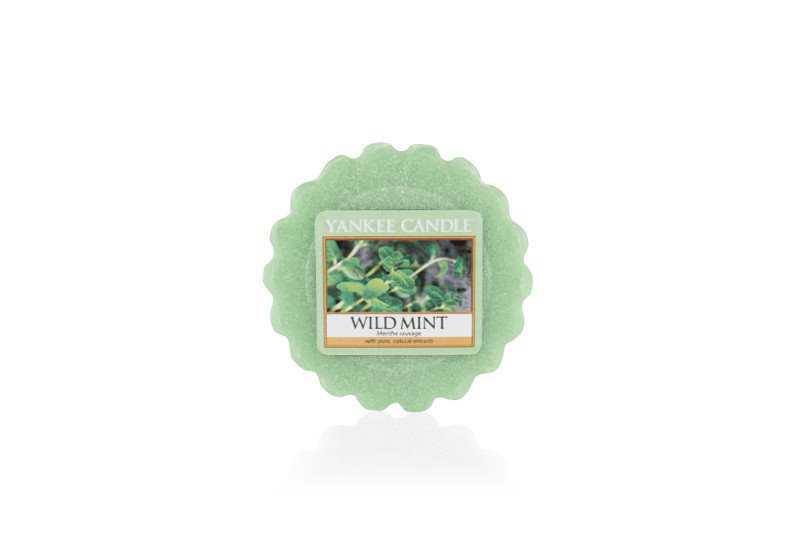 Yankee Candle Wild Mint - wosk zapachowy - e-candlelove