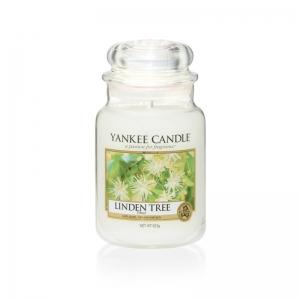 Yankee Candle Linden Tree - duża świeca zapachowa - e-candlelove