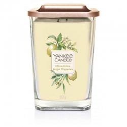 Yankee Candle Citrus Grove Elevation Coll. W/Plt Lid - duża świeca zapachowa - candlelove