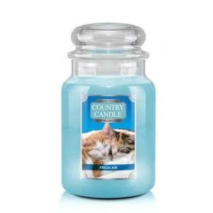 Country Candle Fresh Air Kitten - duża świeca zapachowa - candlelove